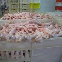 Grade A Processed Frozen Chicken Feet