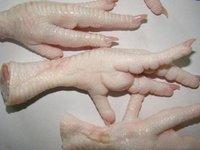 Clean Cheap Grade A Processed Frozen Chicken Feet