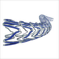 Ultimaster Sirolimus Eluting Coronary Stent System