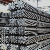 Rolled Steel Angle
