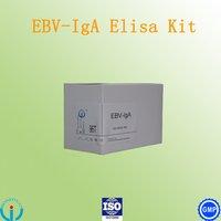 Epstein Barr Virus EBV IgA ELISA Kit