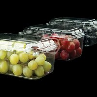 Plastic Punnet For Fruits