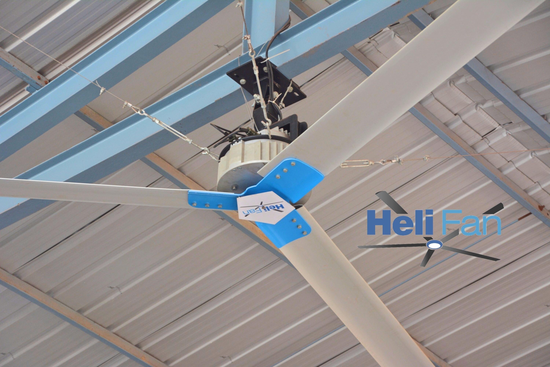 HeliFan of 8 feet diameter to 24 feet BLDC Motor