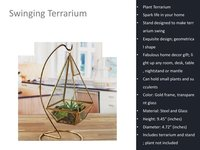 Swinging Decorative Terrarium
