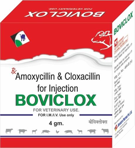 Amoxycillin Cloxacillin Injection For Veterinary Use Only