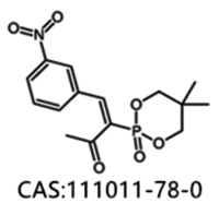 3-(5,5-diMethyl-2-oxo-1,3,2-dioxaphorinane-2-yl)-4-(3-nitrophenyl)-bu-3-en-2-one CAS No.:111011-78-0