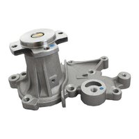 Water Pump Assy - Spark