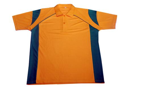 Mens Sports t-shirt