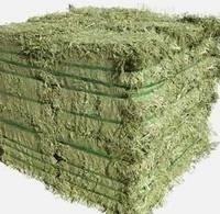 Alfafa Hay,Hay Animal Feed, Hay Feed