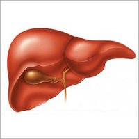 Liver Disease Herbal Drops