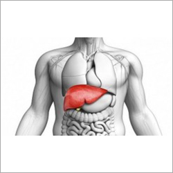 Liver Herbal Drops