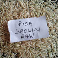 Pusa Brown Raw