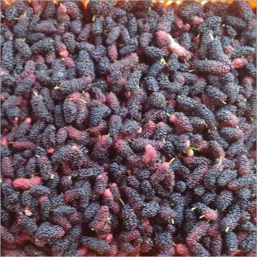 Frozen Mulberry Fruit