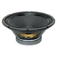 Professional Pa Speaker -100 watt