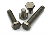Stainless steel SS202/304/316 Hexagonal Bolt