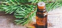 Fir Needle oil