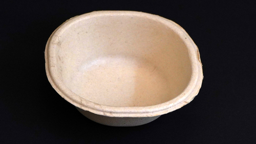Square Bagasse Bowls