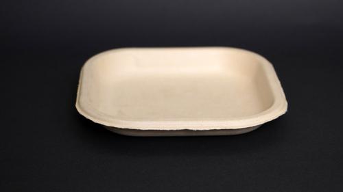 Baggasse Plate