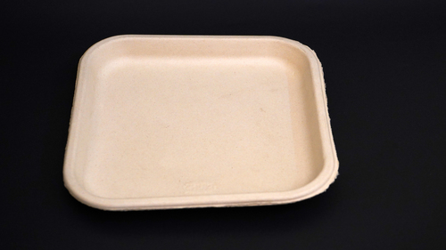Disposable Baggasse Plate