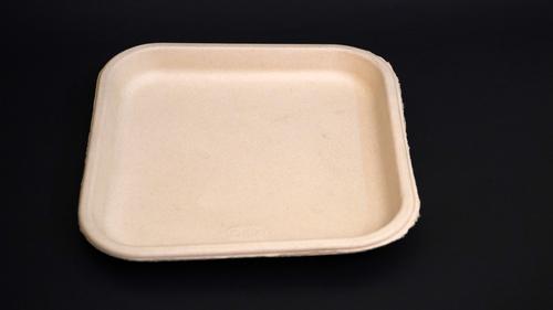 Disposable Baggasse Plate