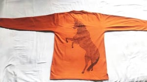 Hand Painted Horse On T Shirt