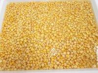 Canned Sweet Kernel Corn in Brine