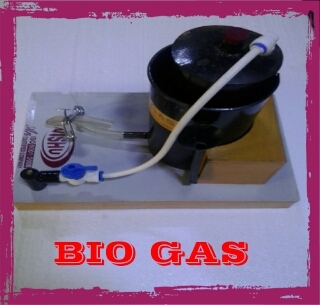 Bio Gas plant working model Labcare-Online