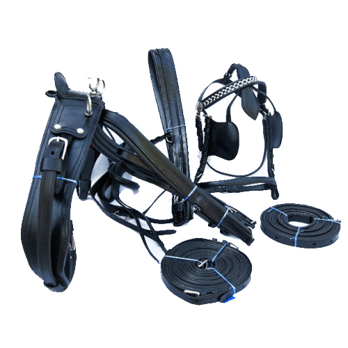 Basic Driving Harness
