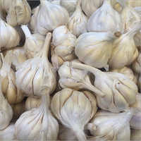 Indian Fresh Garlic