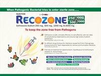 Ceftriaxone Sodium 250 mg/500 mg/1000 mg & 2000 mg