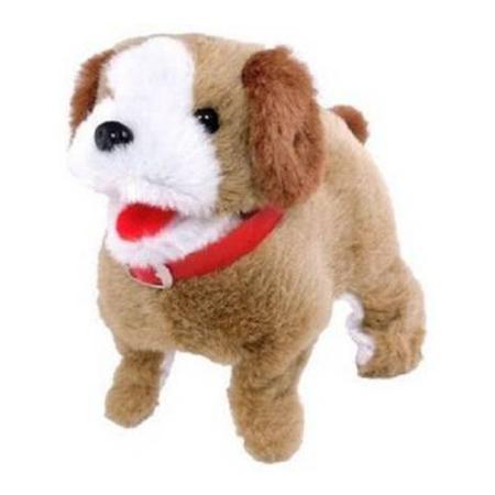 Fantastic Jumping Puppy