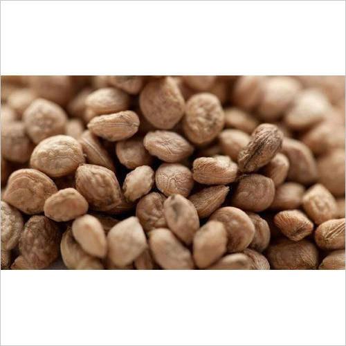 Sarpagandha Seed