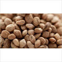 Sarpgandha Seed
