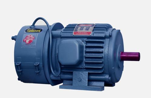 Rajlaxmi Electro Magnetic Brake Motor