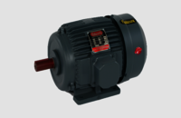 Rajlaxmi Three Phase Electric Motors