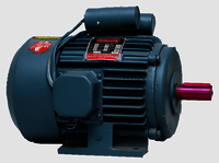 Rajlaxmi Single Phase Electric Motors