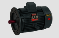 Rajlaxmi Flange Mounted Electric Motors