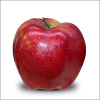Red Chief Apple