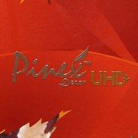 Pinex Decor Laminate Sheet