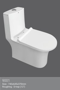 Rimless one piece water closet
