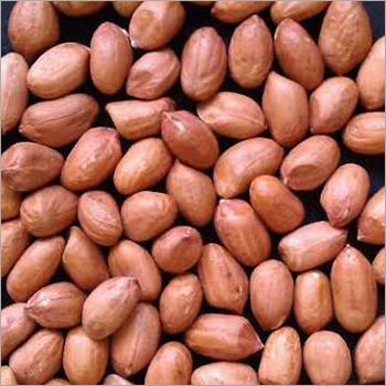 Fresh Peanut