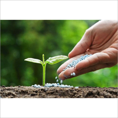Agriculture Organic Fertilizer