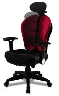 Duo Updown Revolving Chair