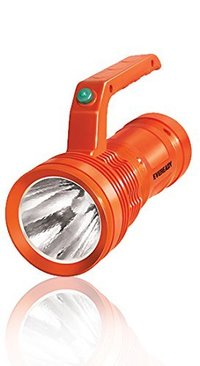 Eveready DL96 Torch Light