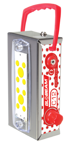 C12 Rechargeable Emergency Lamp