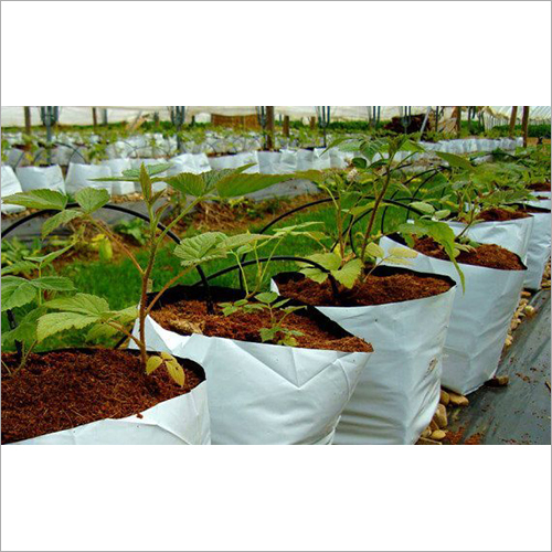 Coir Pith Bio Products