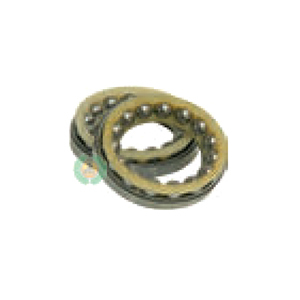 Bearing Cage Kit ZF