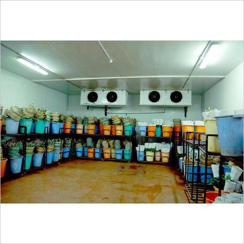 Flower Cold Storage Room