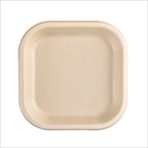 7 Inch Biodegradable Snack Plate