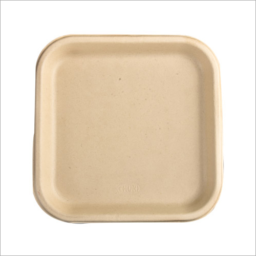 10 Inch Biodegradable Snack Plate